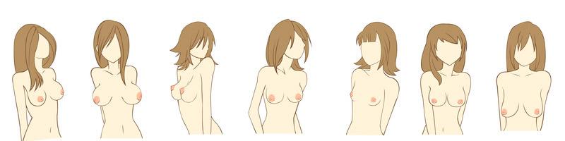 distintas formas y tipos de pechos